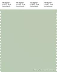 PANTONE SMART 13-6208X Color Swatch Card, Bok Choy