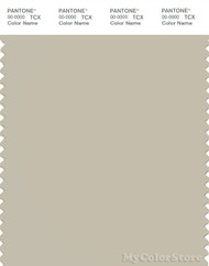PANTONE SMART 14-0105X Color Swatch Card, Overcast