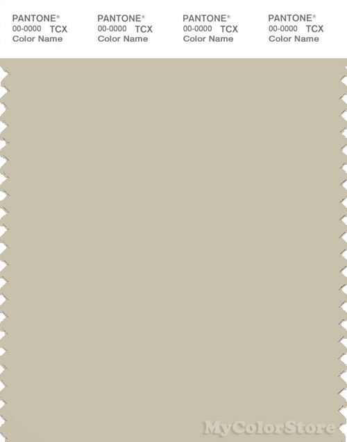 PANTONE SMART 14-0108X Color Swatch Card, Pale Gray Green