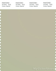 PANTONE SMART 14-0210X Color Swatch Card, Tidal Foam