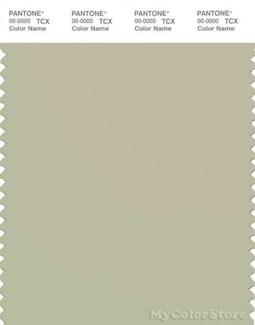 PANTONE SMART 14-0210X Color Swatch Card, Tidal Foam