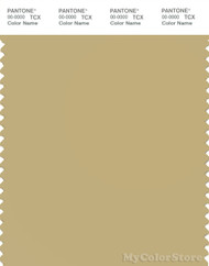 PANTONE SMART 14-0721X Color Swatch Card, Hemp