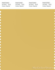 PANTONE SMART 14-0837X Color Swatch Card, Misted Yellow