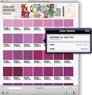 10,000 colors at your fingertips via the Pantone Color Manager Download Software
