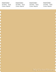 PANTONE SMART 14-0936X Color Swatch Card, Sahara Sun