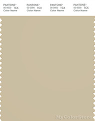PANTONE SMART 14-1014X Color Swatch Card, Gravel