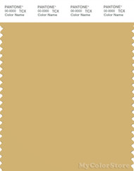 PANTONE SMART 14-1031X Color Swatch Card, Rattan