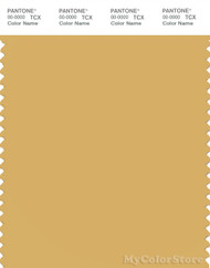 PANTONE SMART 14-1036X Color Swatch Card, Ochre