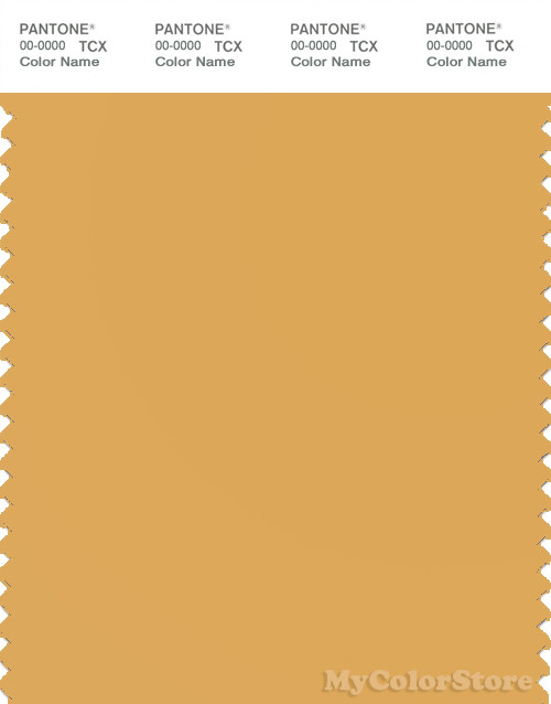 PANTONE SMART 14-1041X Color Swatch Card, Golden Apricot