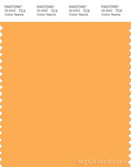 PANTONE SMART 14-1050X Color Swatch Card, Marigold
