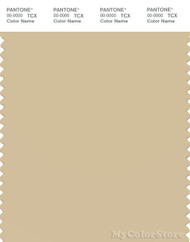 PANTONE SMART 14-1110X Color Swatch Card, Boulder