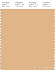 PANTONE SMART 14-1127X Color Swatch Card, Desert Mist
