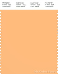 PANTONE SMART 14-1128X Color Swatch Card, Buff Orange