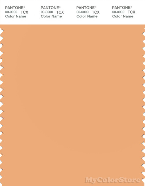 PANTONE SMART 14-1133X Color Swatch Card, Apricot Nectar