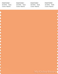PANTONE SMART 14-1139X Color Swatch Card, Pumpkin