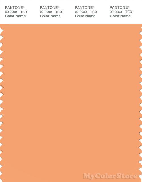 PANTONE SMART 14-1139X Color Swatch Card, Pumpkin