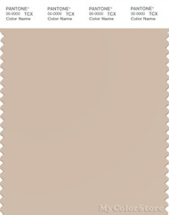 PANTONE SMART 14-1209X Color Swatch Card, Smoke Gray