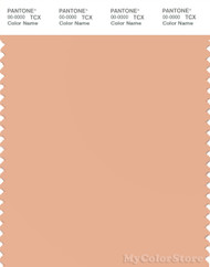 PANTONE SMART 14-1220X Color Swatch Card, Grain