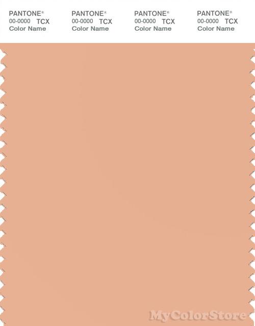 PANTONE SMART 14-1220X Color Swatch Card, Grain