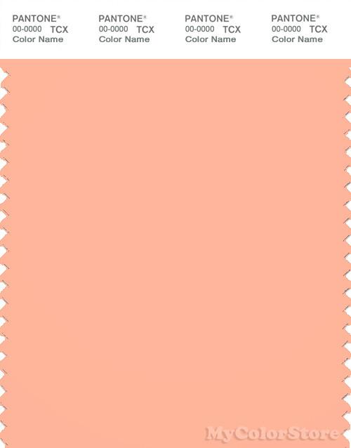 PANTONE SMART 14-1228X Color Swatch Card, Peach Nectar