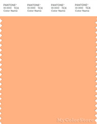 PANTONE SMART 14-1231X Color Swatch Card, Peach Cobbler
