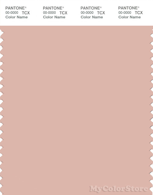 PANTONE SMART 14-1311X Color Swatch Card, Evening Sand