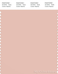PANTONE SMART 14-1312X Color Swatch Card, Pale Blush