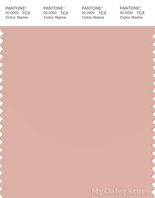 PANTONE SMART 14-1313X Color Swatch Card, Rose Cloud