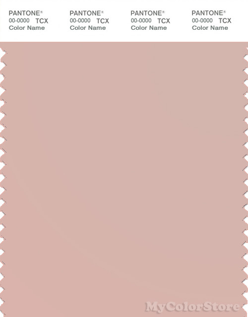 PANTONE SMART 14-1506X Color Swatch Card, Rose Smoke