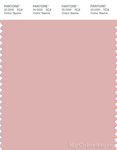 PANTONE SMART 14-1508X Color Swatch Card, Silver Pink