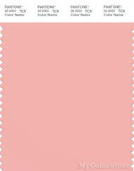 PANTONE SMART 14-1513X Color Swatch Card, Blossom