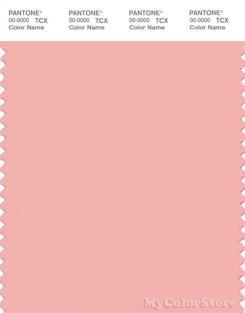 PANTONE SMART 14-1513X Color Swatch Card, Blossom