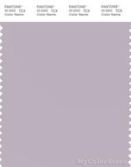 PANTONE SMART 14-3805X Color Swatch Card, Iris