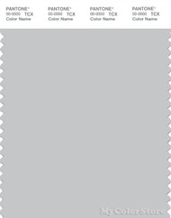 PANTONE SMART 14-4102X Color Swatch Card, Glacier Gray