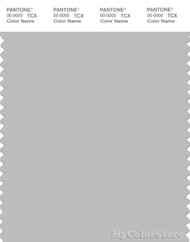 PANTONE SMART 14-4103X Color Swatch Card, Gray Violet