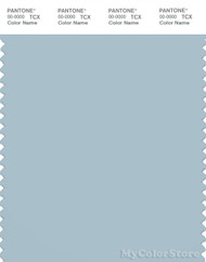 PANTONE SMART 14-4307X Color Swatch Card, Winter Sky