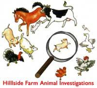 Animal Investigation Appeal