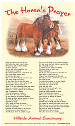 Horse's Prayer Tea Towel