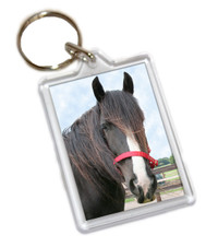 Adoption Keyring
