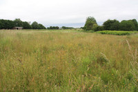 Four Acres of Land Appeal