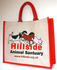 Hillside 'Spot the Mistake' Shopping Bag (HB51)