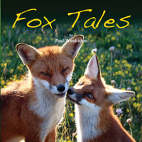 Fox Tales - Paul Windridge