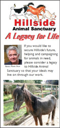 Hillside Legacy Leaflet (Download Version)