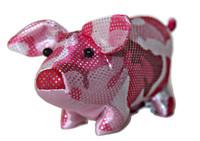 Very Cute Sand Pig