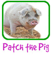 Patch the Pig Adoption