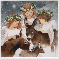 Hillside 2020 Donkey Christmas Cards
