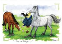 Horse Cartoon Cards