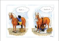 Individual Horse Cartoon Cards