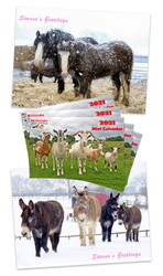 Sanctuary Scenes Christmas Cards and 2021 Mini Calendar Pack Offer