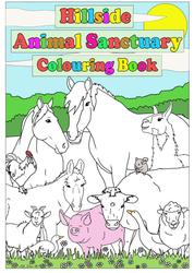 Hillside Colouring Book